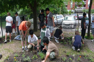 Valley Park Go Green Project